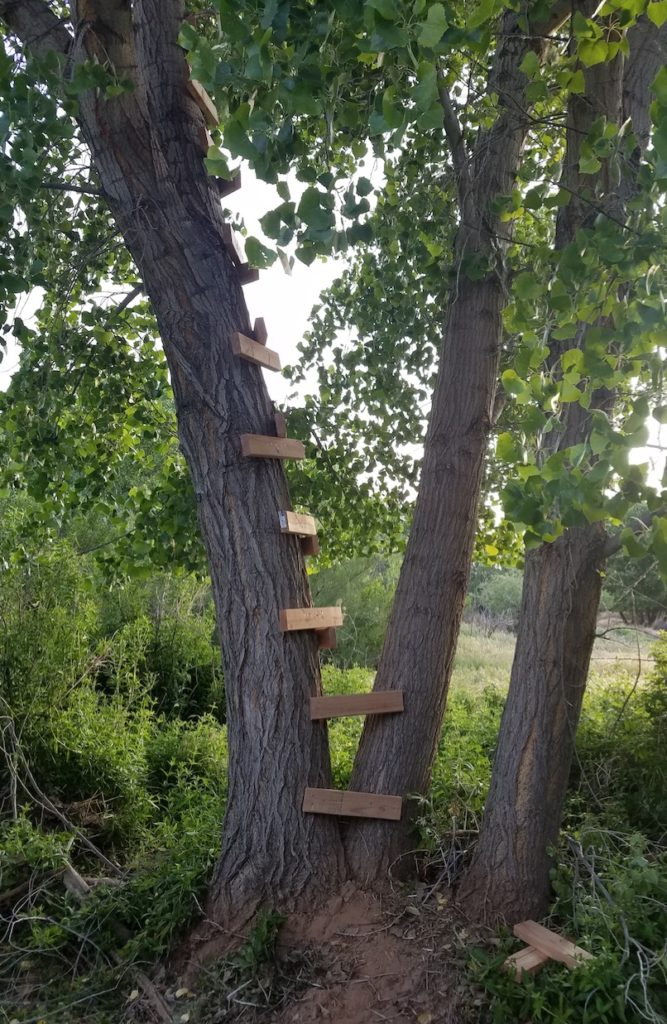 Ladder for the treehouse