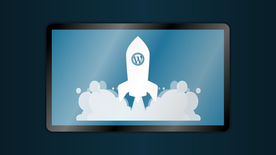 Bare-bones Guide to Launching a WordPress Theme Shop from Scratch